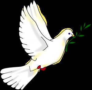 Peace-dove-